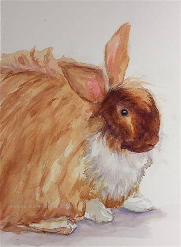 Original Square Watercolor Painting Lop Rabbit Portrait