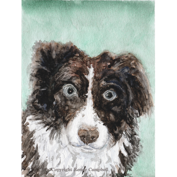 Custom Pet Portrait - Original Watercolor, Example of Dog - Made to Order