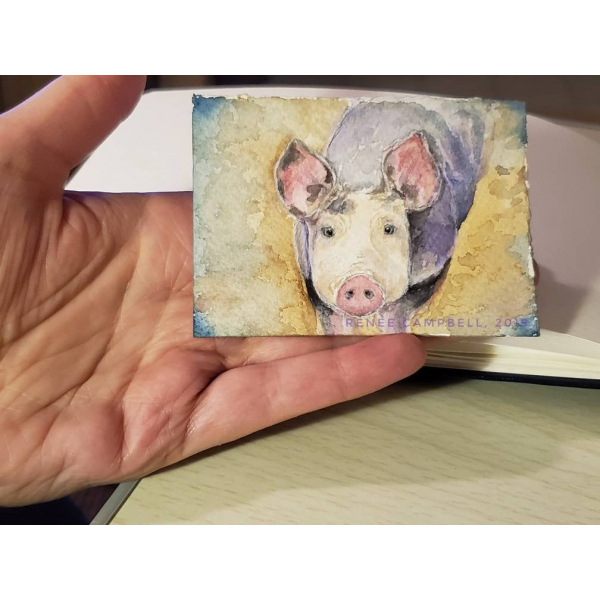 Size of ACEO - Pig Watercolor, Inquisitive Piggy, ATC Size Small Painting