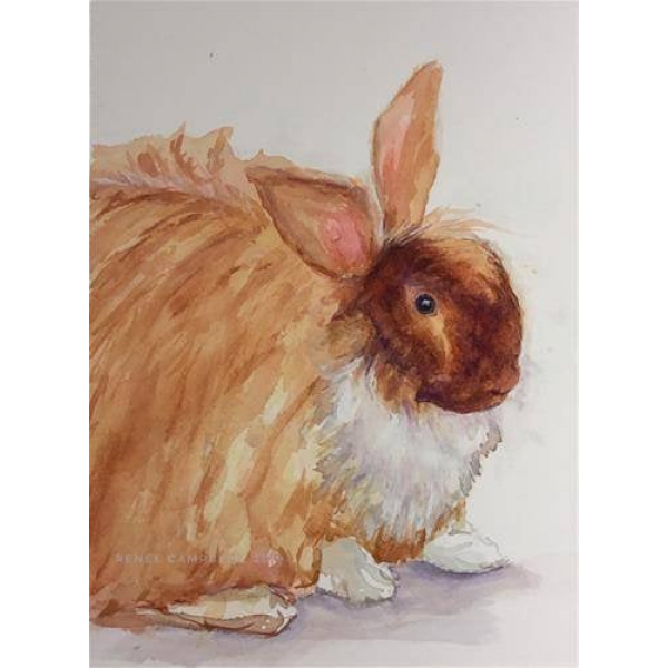 "Original ""Harper, aka Buns"" Watercolor, Mixed Media Small Painting, Pet"