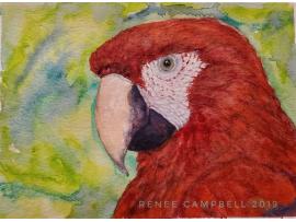 "Original ""Scarlet Macaw,"" Watercolor, Mixed Media Small Painting"
