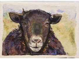 Original Miniature - Black Sheep Watercolor, ACEO ATC Size Small Painting