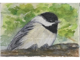 Original ACEO - Chickadee Watercolor, ATC Size Small Painting, by Renee Campbell