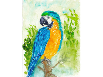 Custom Commission - Small Pet or Wildlife Portrait - Original Watercolor, Small Painting or ACEO