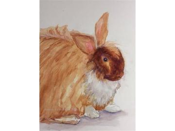 Original Angora Rabbit Watercolor, Mixed Media Pet Portrait, Small Painting