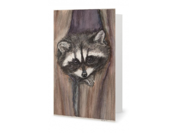 "3 Pk of Cards - Cozy Raccoon Art Print, 7"" x 5"""