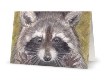 "3 Pk of Cards - Jazz Hands Raccoon Art Print, 5"" x 7"""