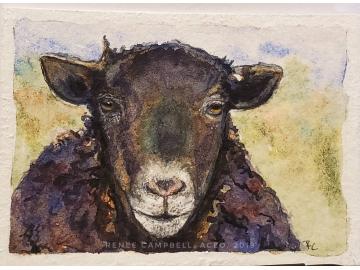 Original Miniature - Black Sheep Watercolor, ACEO ATC Size Small Painting